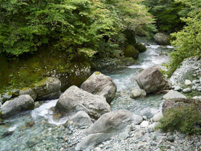 吉野川上流