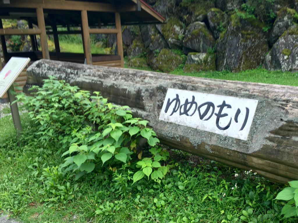 夢の森公園キャンプ場