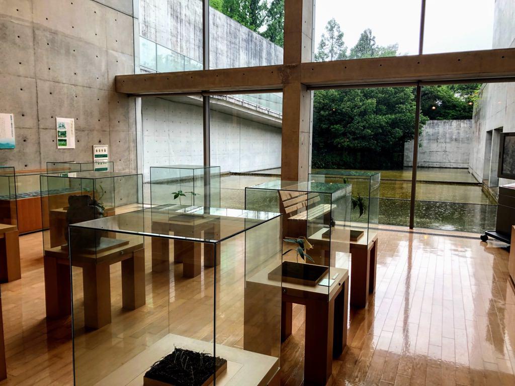 横倉山自然の森博物館
