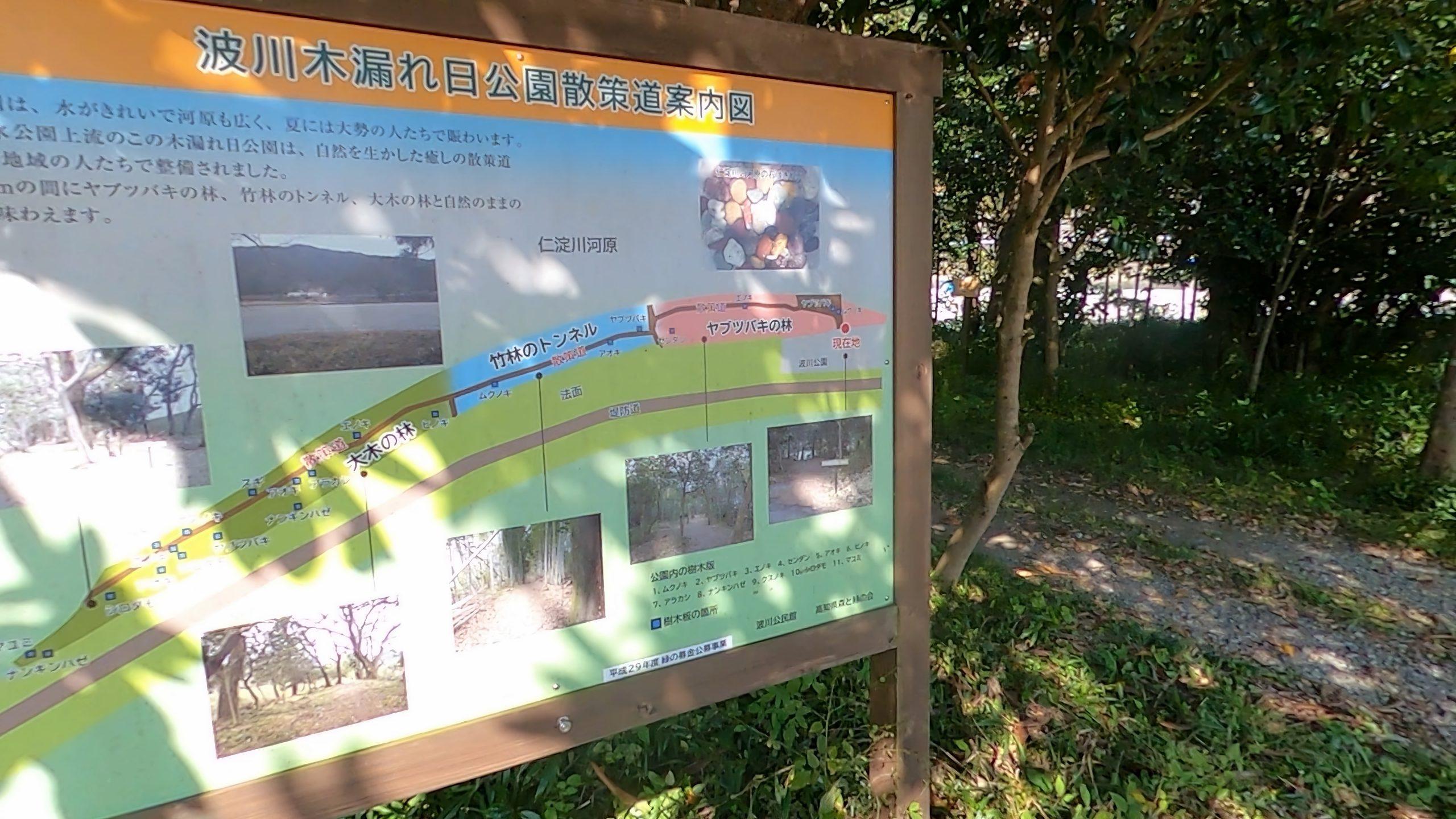 波川木漏れ日公園