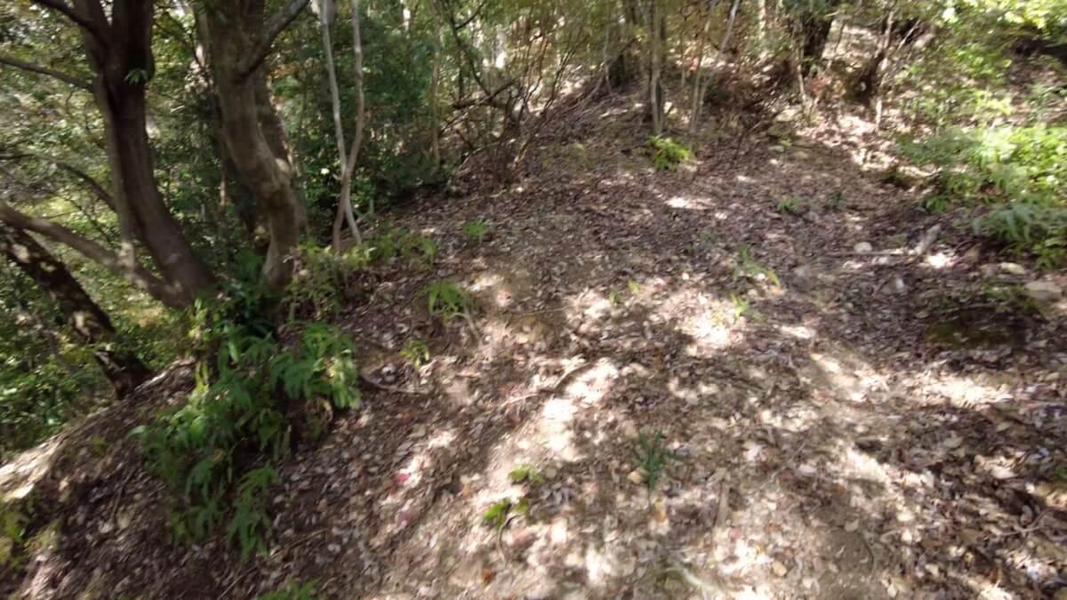 急坂で道かどうかも 分かりにくい荒れた状態