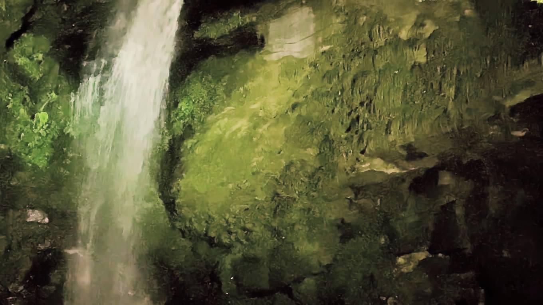 さらに琵琶の滝もライトアップされていた