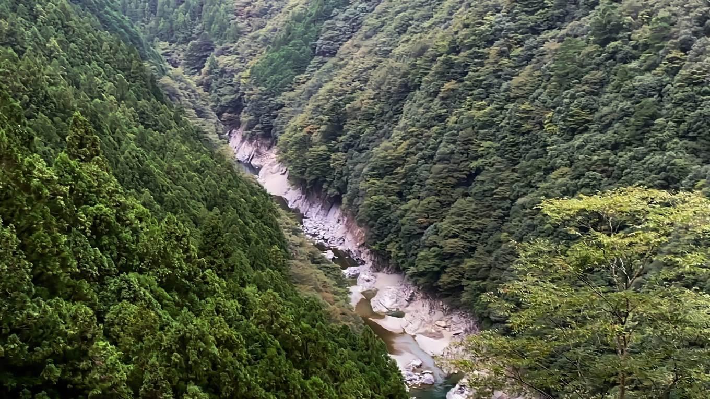 深い渓谷が見えた