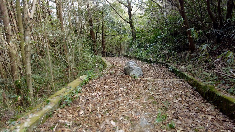 この道はあまり使われていないのか 落ち葉が深く積もっていた