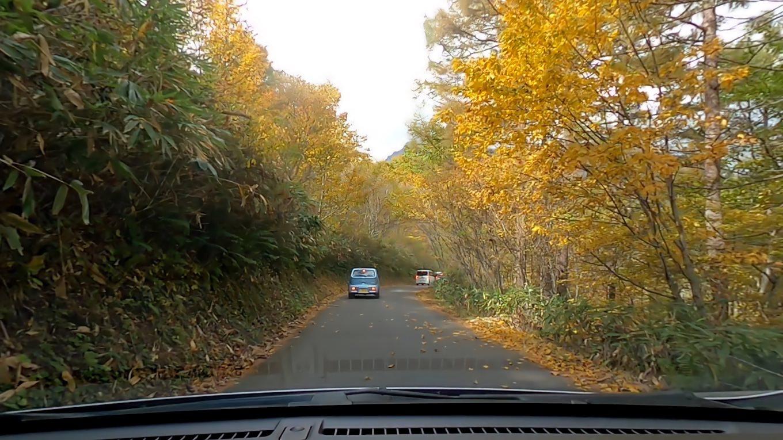 すっかり紅葉した山の中を走る