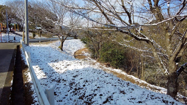 前日に降った雪が積雪していた