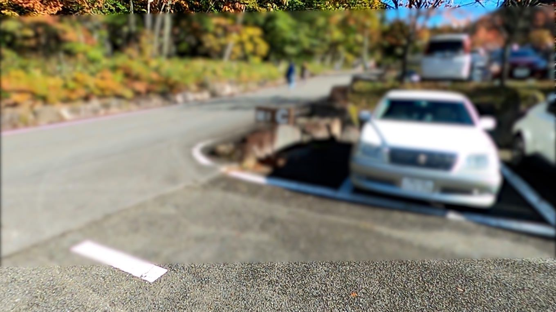 駐車場から 斜面を上がっていく