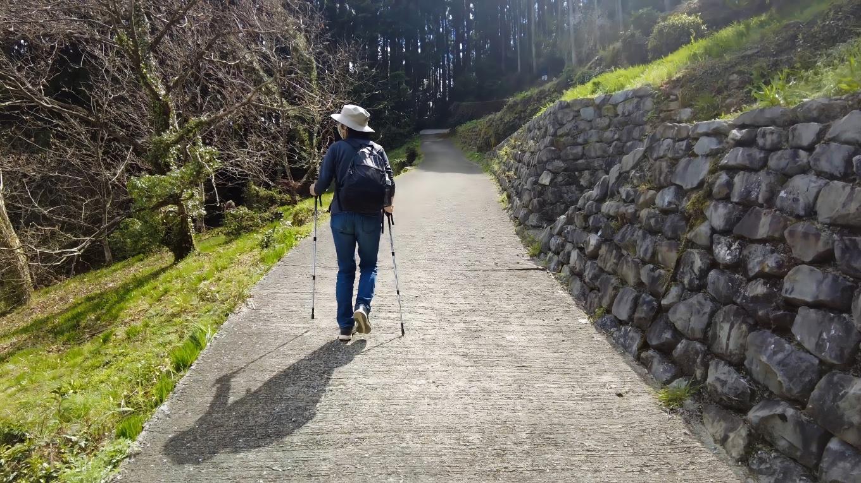 中越家のしだれ桜からさらに坂道を上がっていく