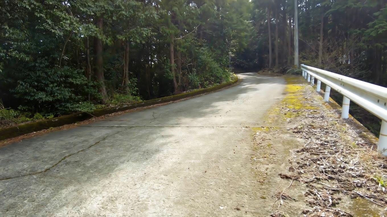 車道歩きで歩きやすいが 斜度がキツイので息が上がる