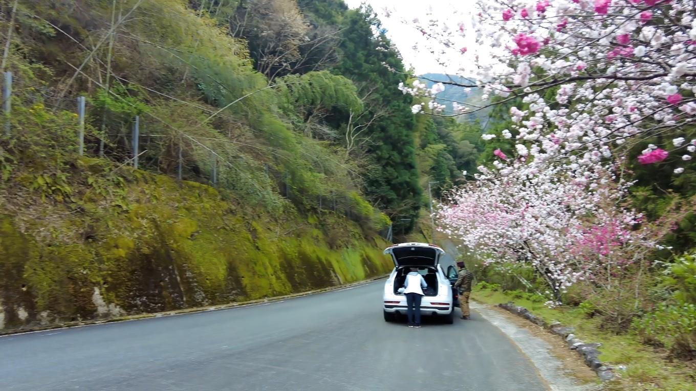 食事を終え 車で長屋大橋を渡り登り口途中の路側帯に車を停める