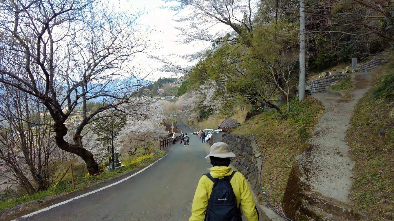 しばらくひょうたん桜を見ながら休憩し 下山することにした