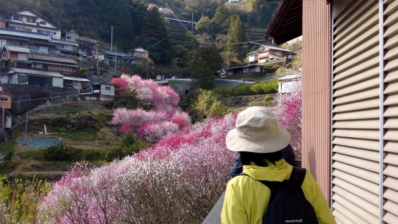 途中の住民の方が 自宅からの絶景を見せてくれた