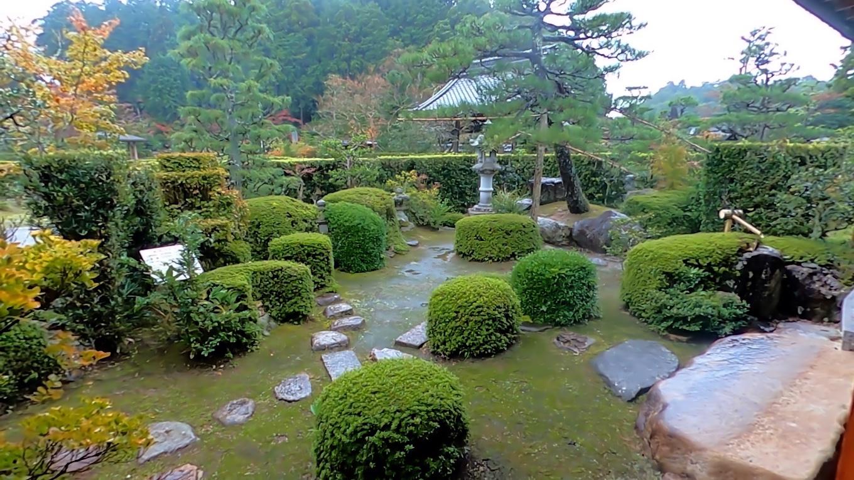 建物の中に入り 庭を眺める