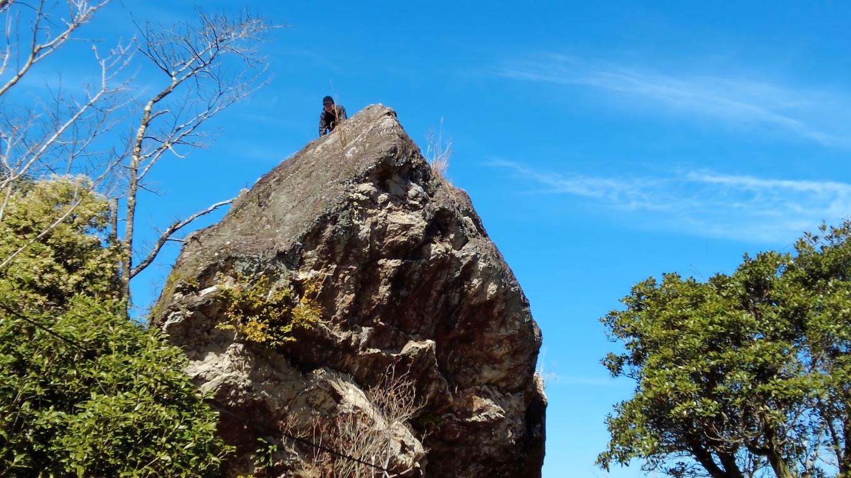 物見岩まで上がってきた
