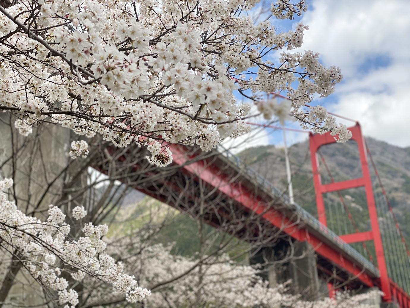 大渡ダム公園