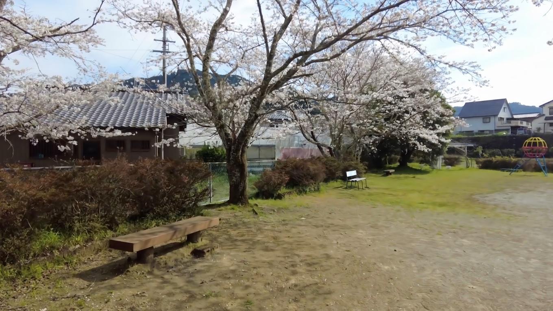公園に数本桜の木があったので ここのベンチで休憩