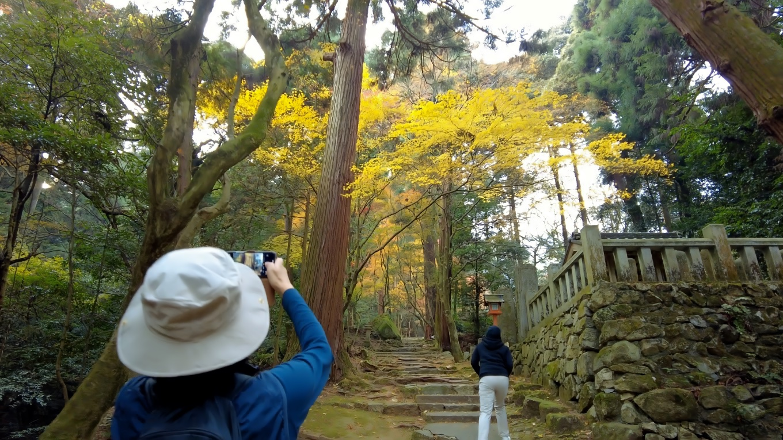 紅葉が見頃で 写真を撮りまくるツレ