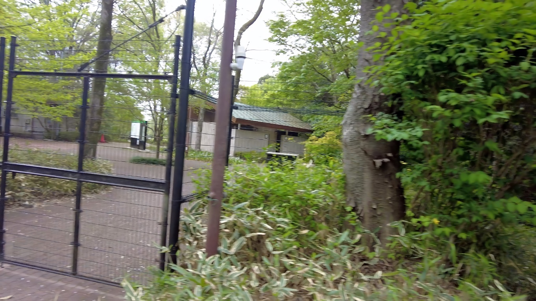 水生植物園まで歩いてきたが やはり休園中