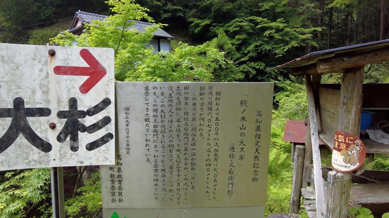 樅ノ木山の大杉は この奥にあるようだ