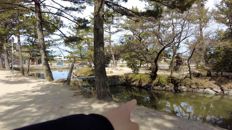 駐車場を入ったところの神池にある小島にあるのは 靏島神社 つるしまじんじゃ だ