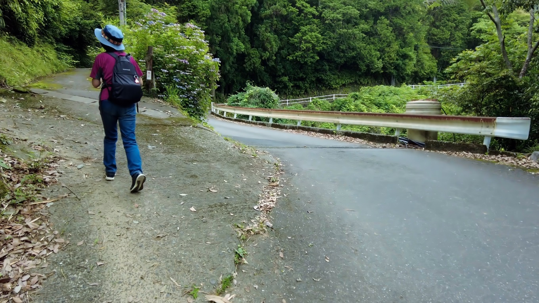 車道から遍路道に入る