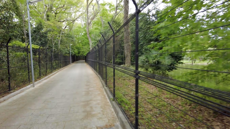 いったん駐車場まで戻り 神代植物公園の方に歩いて行くことにした