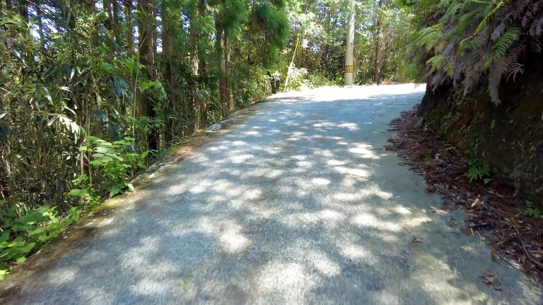 ここからの道は斜度がきつくて 車道歩きだがなかなか大変