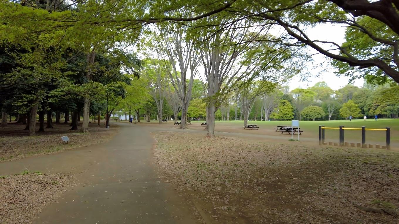 神代植物公園自由広場まで歩いてきた