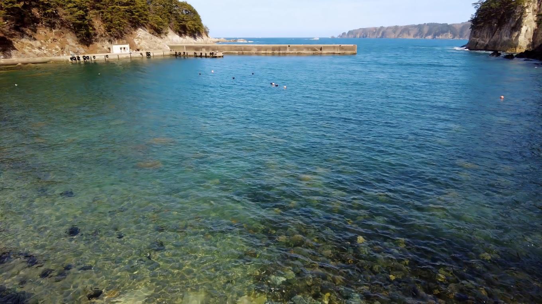 海はとてもきれいだ