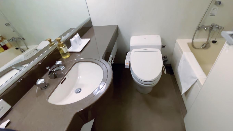 洗面台とトイレ いちおう部屋にも風呂がある
