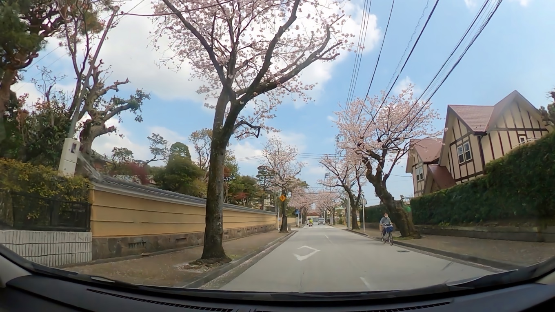 そこから車で 小田原市内を走る