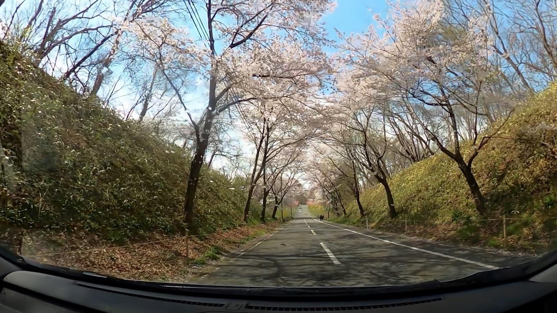 三春滝桜から車で ダム湖のさくら湖にむかう