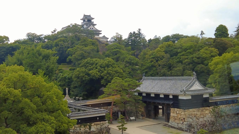 この2つを同じカメラアングルで撮影できるのは 日本で唯一だ