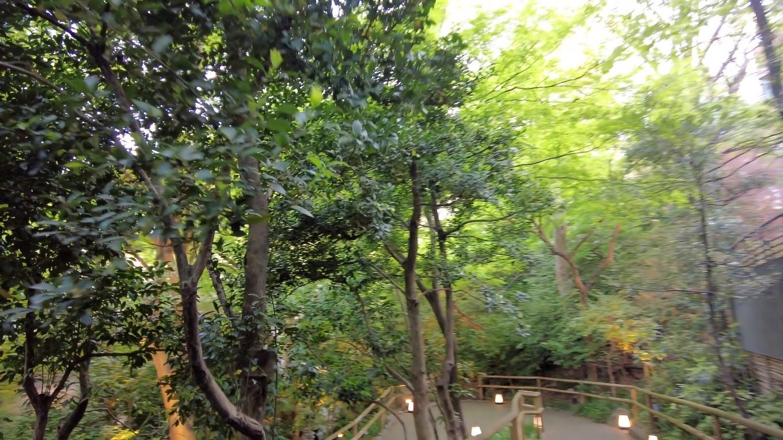 ここの庭園は 東京のど真ん中にいることを忘れるほどだ