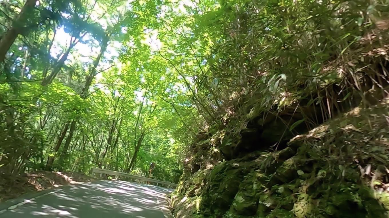 この道が細くてつづら折りの難路だ