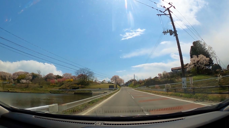 そこから車で 三春滝桜に向かう