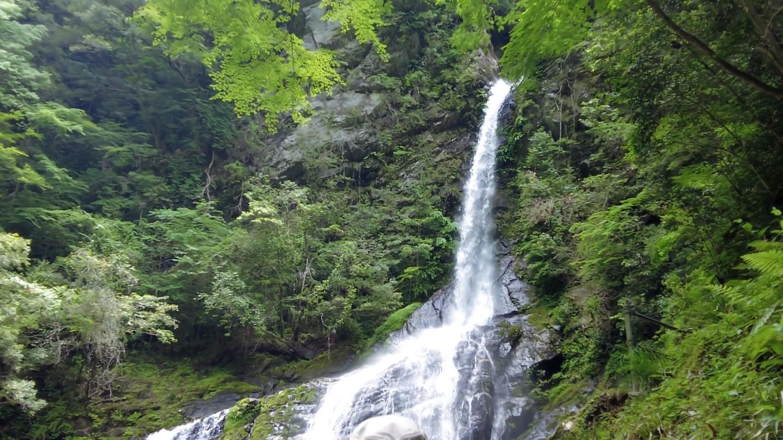 飛龍の滝は2段に分かれた滝で 落差は上段15m 下段25m