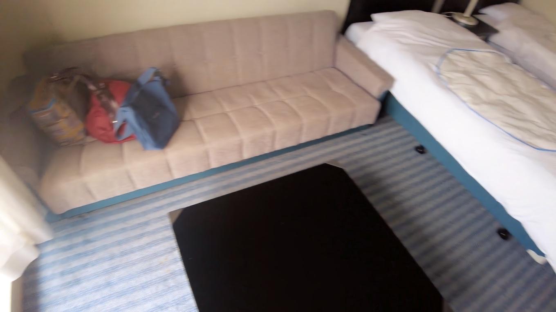 ソファーは簡易ベッドになるタイプで大きいのが ありがたい