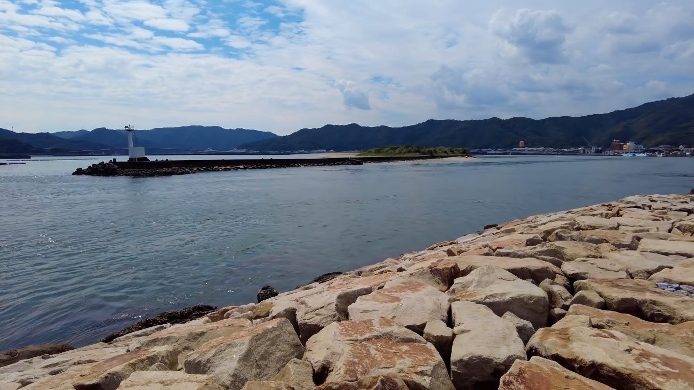 天皇洲はかつて潮干狩りが盛んだったが 近年はアサリが激減して潮干狩りできなくなってしまった
