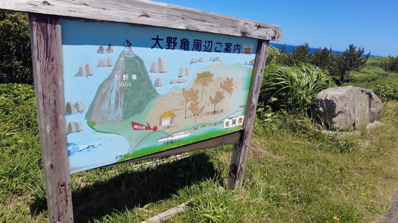 トビシマカンゾウの群生地としても知られ 遊歩道が整備されている